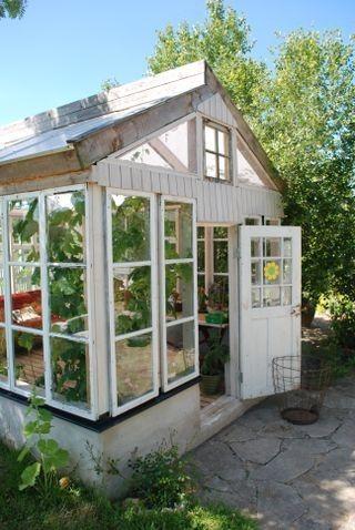 greenhouse by freida
