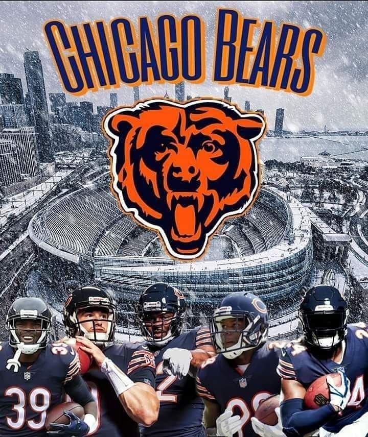 Bear Down Germany On Instagram Go Bears Beardown Germany Letsgobears Dab Chicago Bears Memes Chicago Bears Quotes Chicago Bears Football