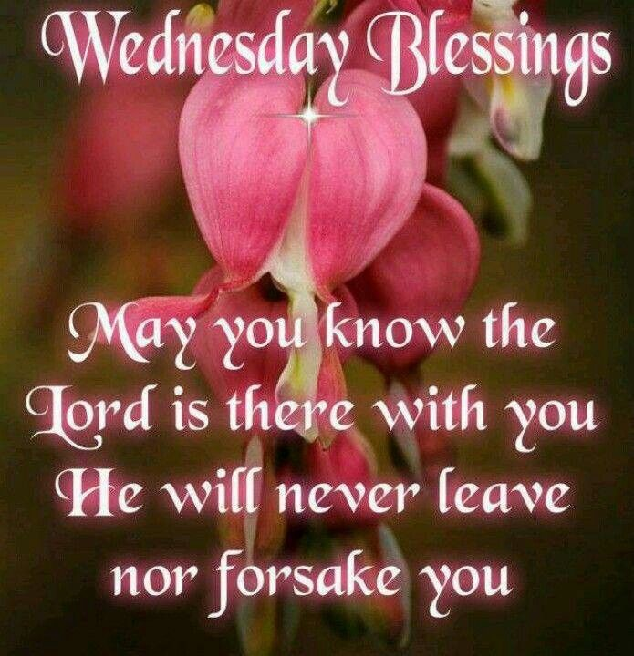 Wednesday Blessing: The Lord, Daily Greetings, Wednesday Blessed, Blessed Pictures, Wednesday Quotes, Blessed Images, Daily Blessed, Gods, Week