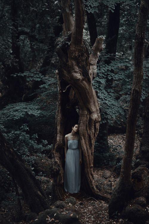 READ about: THREE RIVERS DEEP book series on FACEBOOK @ https://www.facebook.com/threeriversdeepbooks?ref=aymt_homepage_panel  ***A two-souled girl begins a journey of self-discovery...   (pic source:  http://misconceit.tumblr.com/ )   Geheimes Versteck eines Mädchens in einem Baum. Der Baum öffnet laut knarzend seine Rinde, um das hübsche Mädchen vor ihren Verfolgern zu verstecken und zu schützen. Die Verfolger stehen daraufhin ratlos in der Gegend herum.