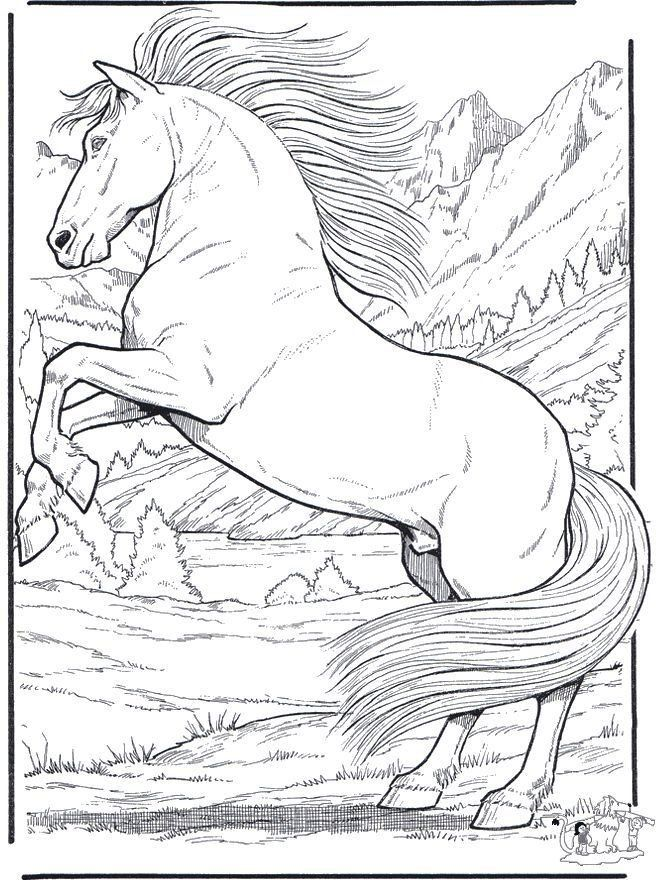 Animal Coloring Pages Realistic Realistic Animal Coloring Pages Horse Coloring Pages Horse Coloring Animal Coloring Pages