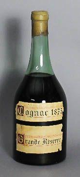 Bottle of Camus Cognac 1875 - £1,000