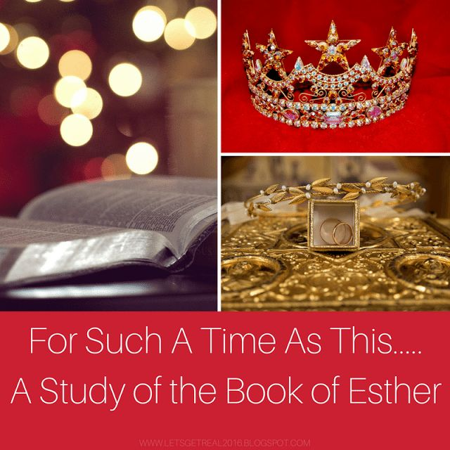 an analysis of the book the beet queen A butcher shop is also featured in her novels the beet queen and tracks the authors' purpose in this book is to offer a guide to louise erdrich's world.