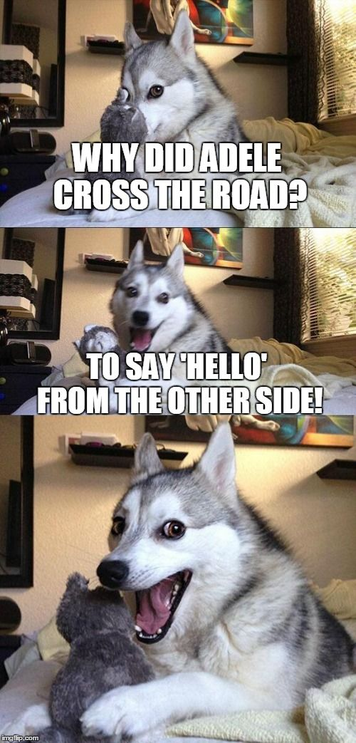 Best Moon Moon Memes Ideas On Pinterest Moon Of The Wolf - The 25 best posts about huskies on the internet