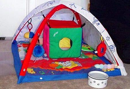 Infant Gym Ferret Playground - PetDIYs.com