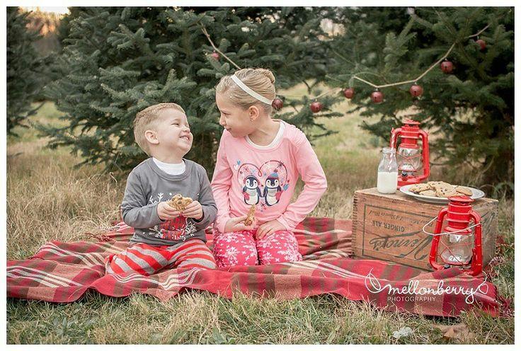 Christmas mini session at Christmas tree farm, milk and cookies, lanterns, children