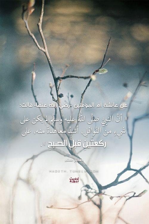 عن عائشة أم المؤمنين -رضي الله عنها- قالت: «أنَّ النبيَّ صلَّى اللهُ عليه وسلَّمَ لم يكن على شيءٍ من النَّوافلِ ، أشدَّ معاهدةً منه ، على ركعتَينِ قبلَالصبحِ».صحيح مسلم (-نافلة ما قبل صلاة الفجر -الصبح)