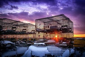 Photograph - Lobster Traps At Sunset by Mike Organ