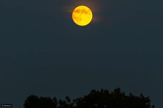 هكذا رأى العالم الخسوف الدموي للقمر صور من كل الدول تقريبا القيادي Lunar Eclipse Nature Photography Photo