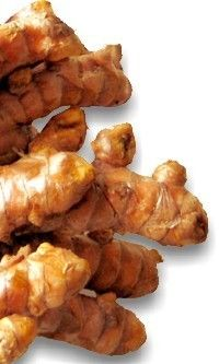 Turmeric health benefits. Characteristics of the Turmeric. Scientific name. Identification, characteristics, origin, content and active ingredients. Medicinal properties and uses of the Turmeric. Health Benefits.  http://www.medicinalplants-pharmacognosy.com/herbs-medicinal-plants/turmeric-benefits/