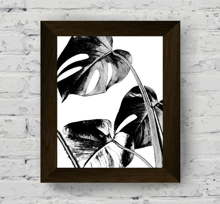monstera leaves, black and white tropical print, palm leaf wall art, plant watercolor, botanical poster, nature wall art, digital download di AlemiPrints su Etsy
