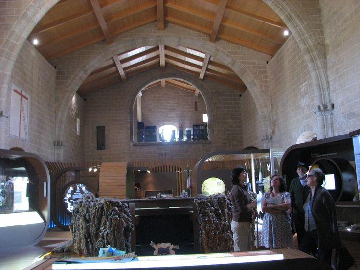 Centro de Interpretación del Parque Nacional de Monfragüe en Toril. En el Centro un homenaje al fallecido Alcornoque el Abuelo.