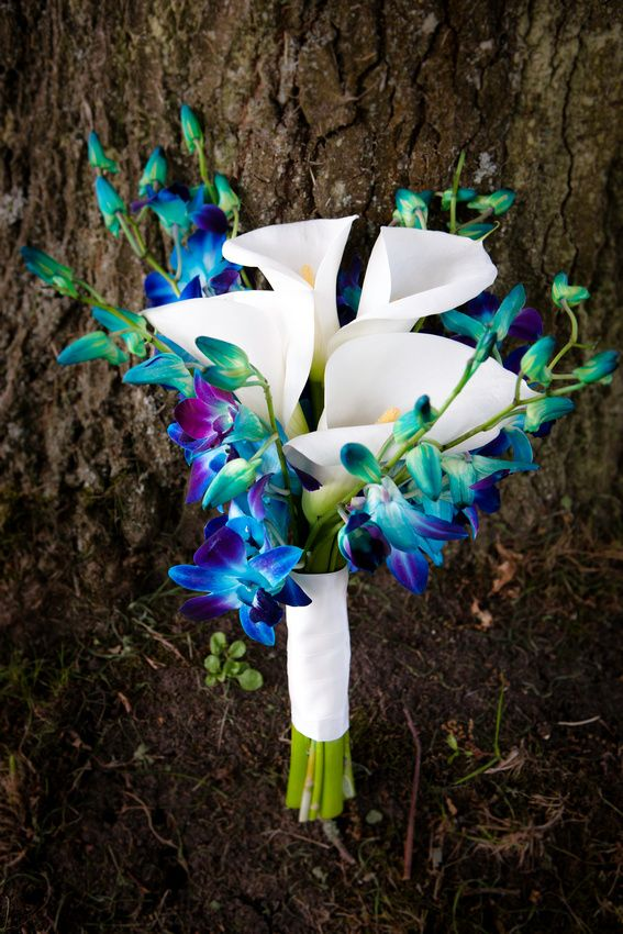 beautiful bouquet-- make it bigger for the bride, and smaller versions to be the boutonnieres for the groomsmen.