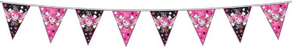 PINK GIRL PIRATE PARTY - ALL ITEMS (Plates, Napkins, Loot Bags, Tablecover etc) | eBay