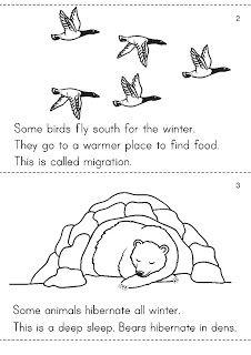 Angol feladatok, mondókák, színezők: Animals in Winter / Hibernation