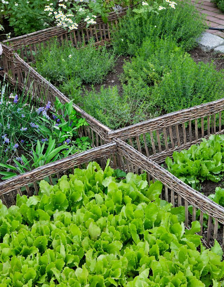 Carolyne Roehm's Tips for Growing a Gorgeous Garden | Architectural Digest