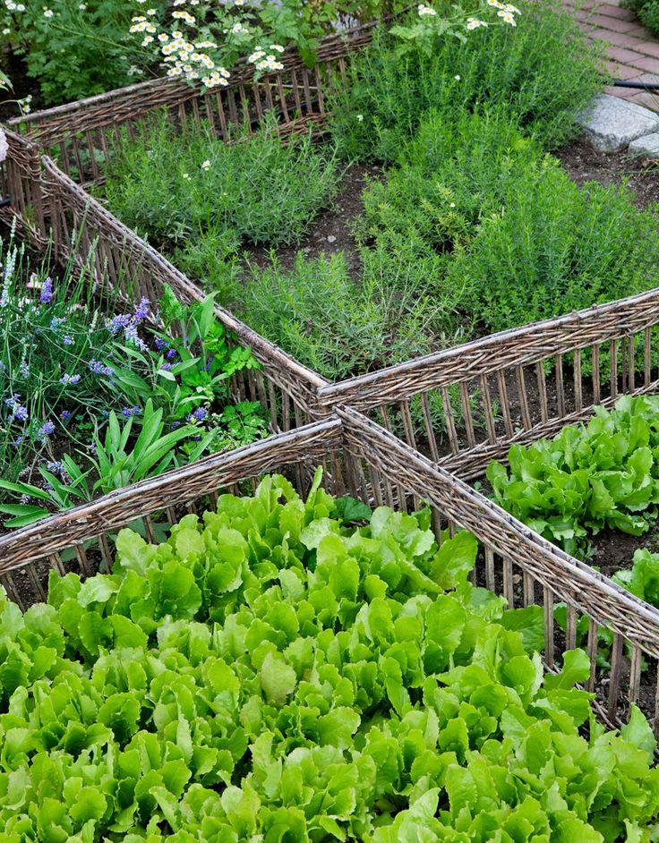 690 best beautiful vegetable gardens images on pinterest