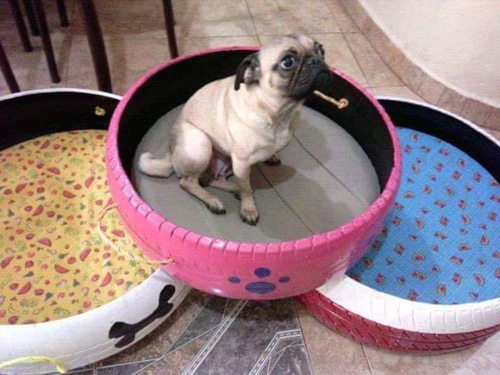 M s de 25 ideas incre bles sobre camas para perros en - Como hacer una cama para perro ...