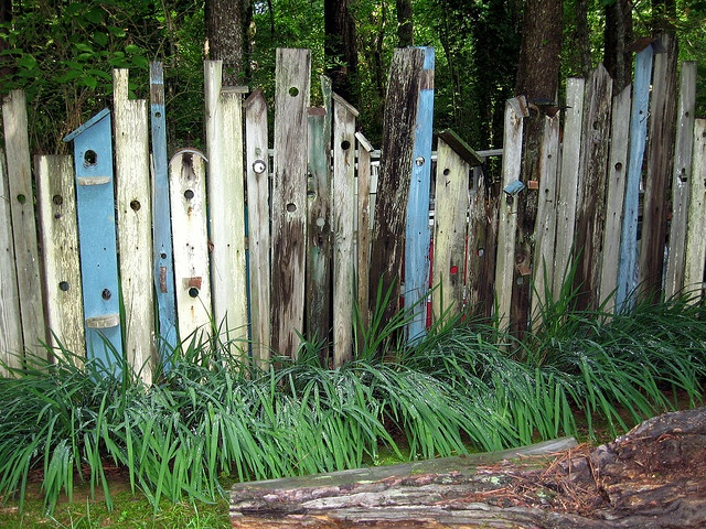 Nina's birdhouse fencing:   Wonder how many winged house hunters check this out.
