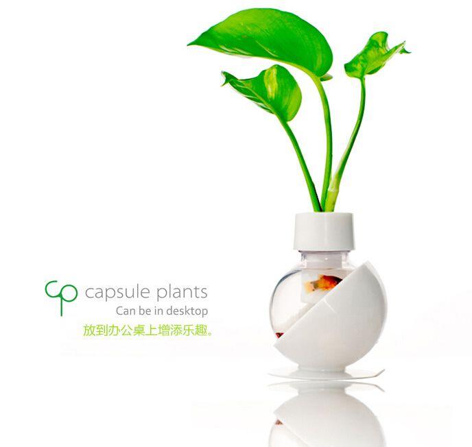 Aliexpress.com: Comprar Decoración del hogar floreros cápsulas Vegetales…