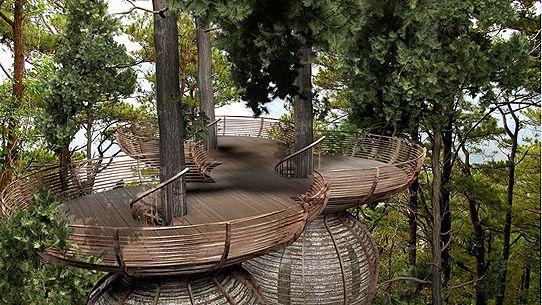 baumhaus-gibbon3.jpg 542×305 Pixel