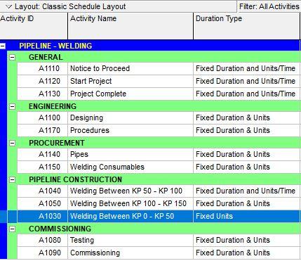 Primavera P6 Custom Activity Bars PRIMAVERA P6 Pinterest - procurement tracking spreadsheet