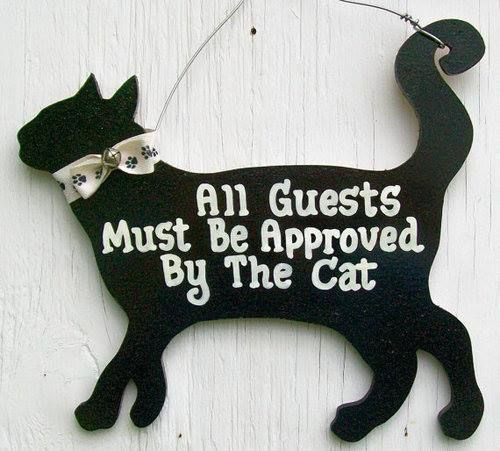 13062 best inspire reduce reuse images on pinterest for Funny home decor