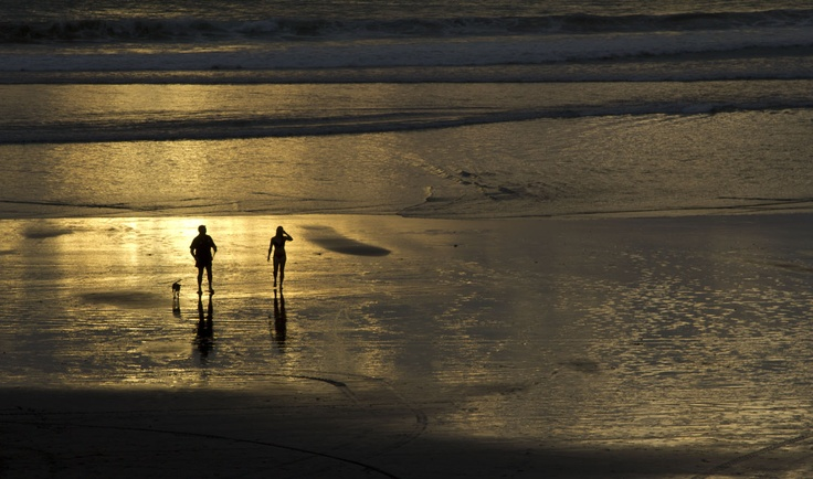 Port Waikato people and dog by Janet Keen  Photographer