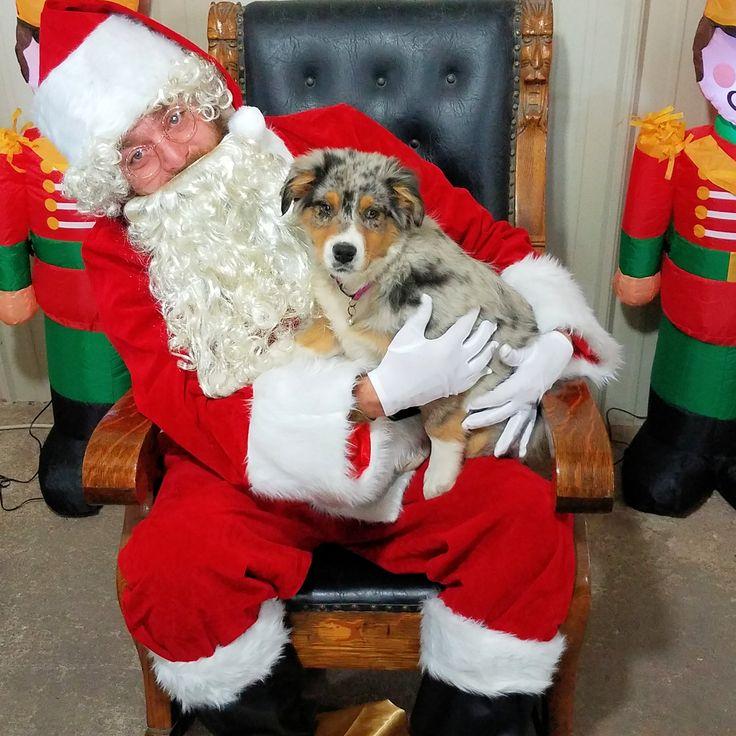 Lady Blue Bell meets Santa