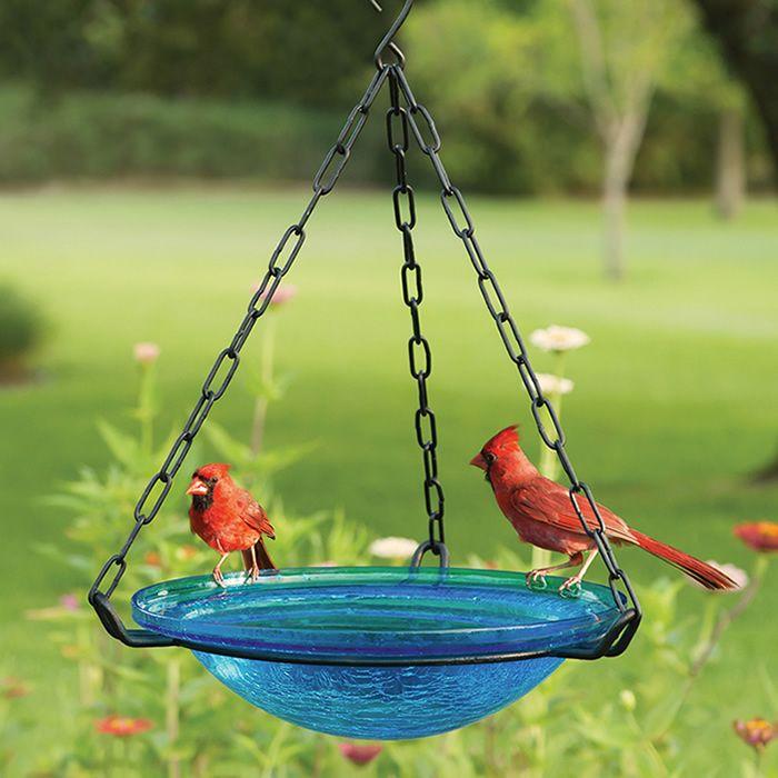 Hanging Glass Bird Bath Diy Bird Bath Hanging Bird Bath