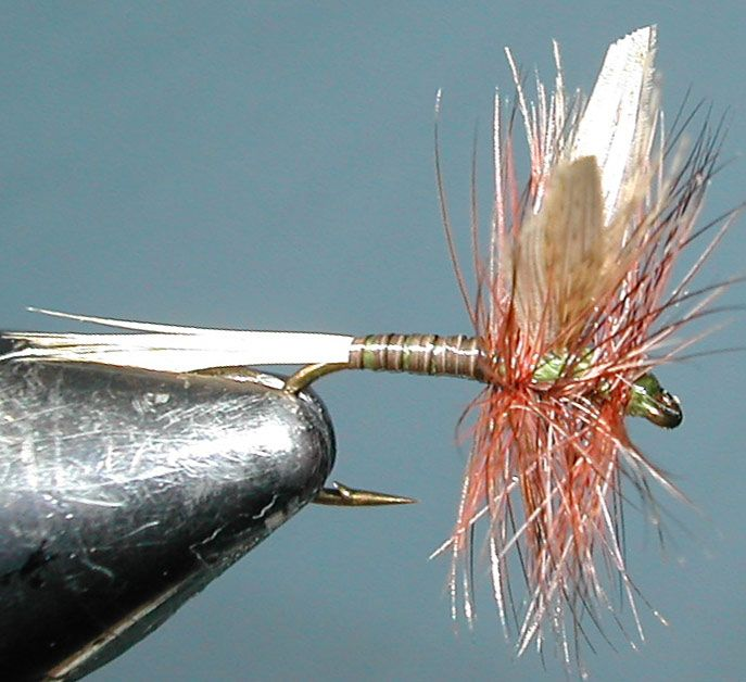 Kakahi Queen trout fly