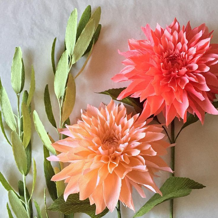 89 best nectar hollow images on pinterest crepe paper flowers olive branches handmade flowers diy flowers paper artwork crepe paper flowers flower making diy paper flower art receptions mightylinksfo