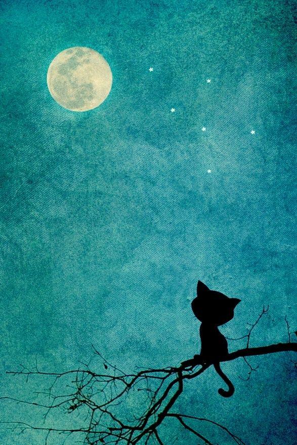 (A través del pequeño gato Negro | Arte e Ilustración)