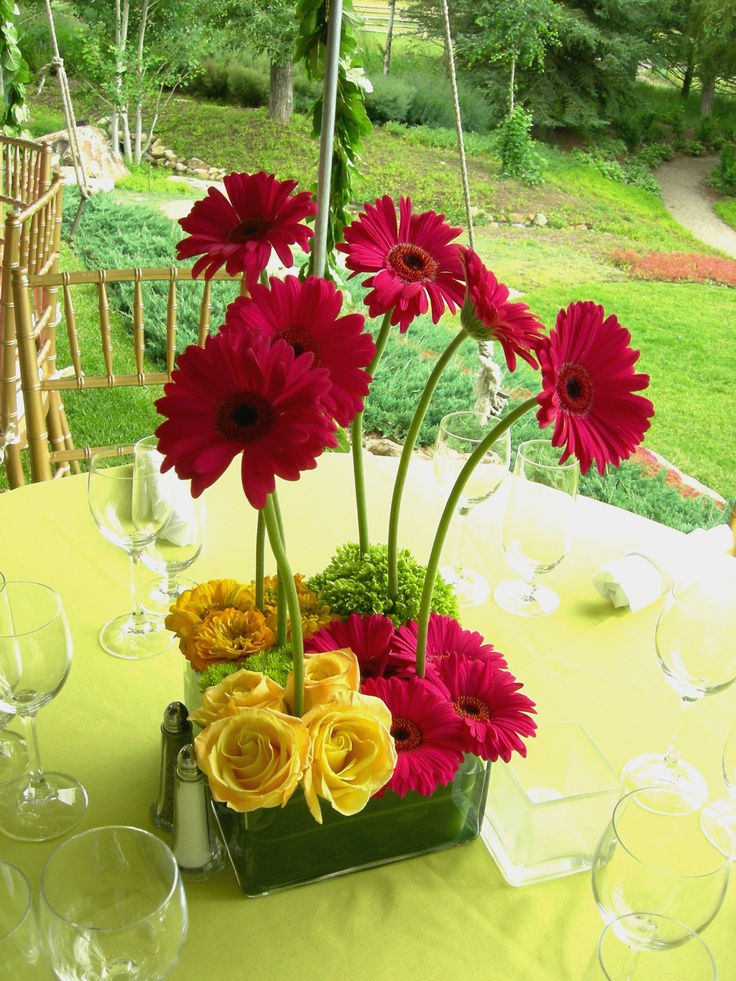 32 best gerber daisy arrangements images on pinterest bellis gerbers with pave flowers junglespirit Gallery