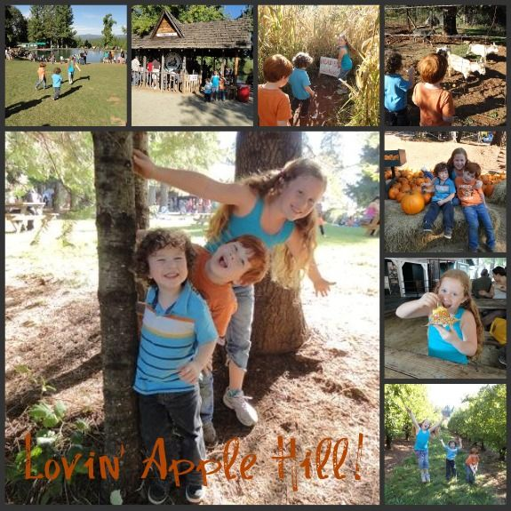 Apple Hill is a fall tradition for Sac families!