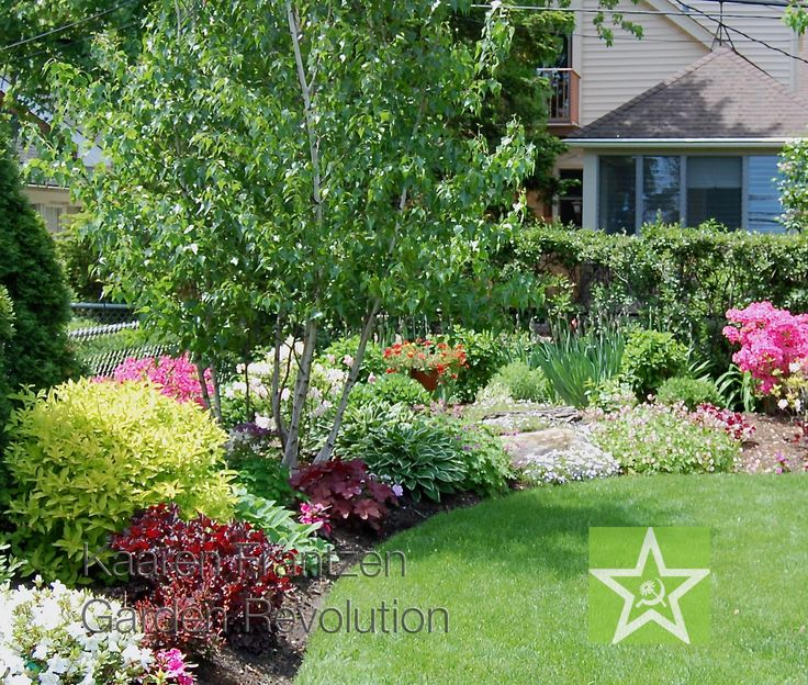 25 best ideas about small trees on pinterest flowering for Miniature shade trees