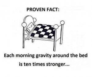 This explains so muchBeds, Laugh, Quote, So True, Funny Stuff, Proven Facts, Humor, Mornings, Gravity