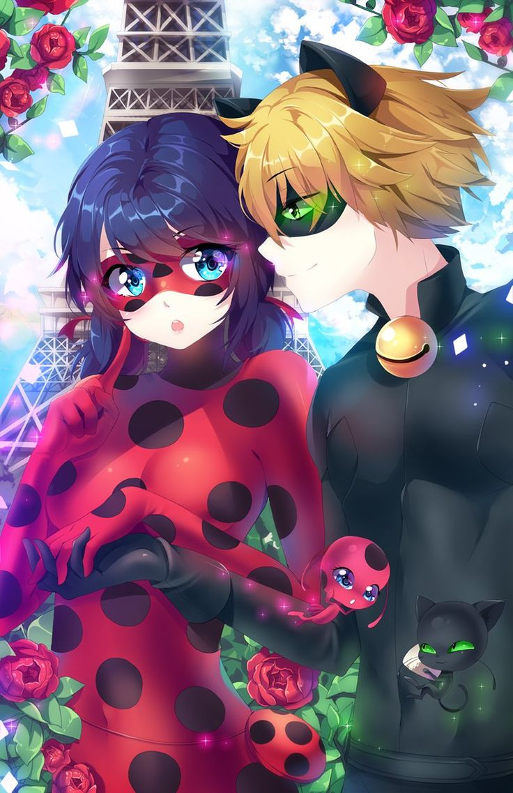 Ladybug And Cat Noir In Anime Style From Miraculous