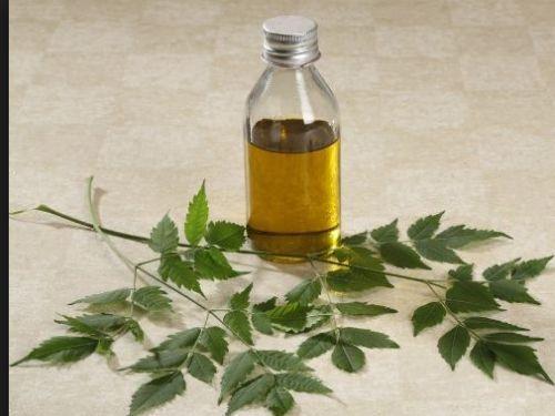 Castor-Oil-Cold-Pressed-amp-Processed-Natural-Emollient-Emollient-Pure-Oil-organic