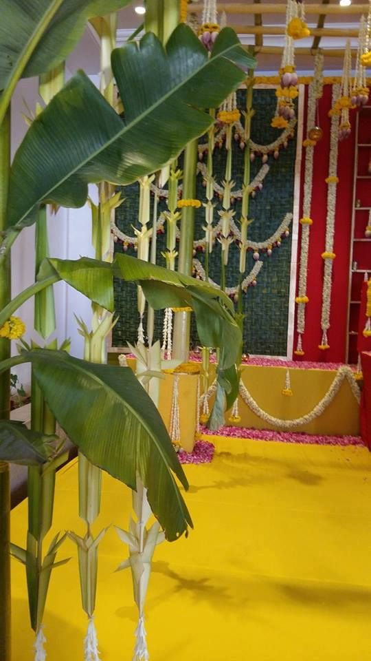 21 Best Green Pandhal Images On Pinterest Indian Wedding Decorations South Indian Weddings