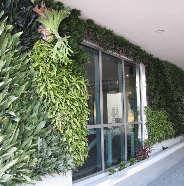 jardines verticales lo ltimo en la avenida