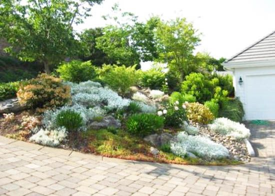 front yard decorating ideas, rocks garden