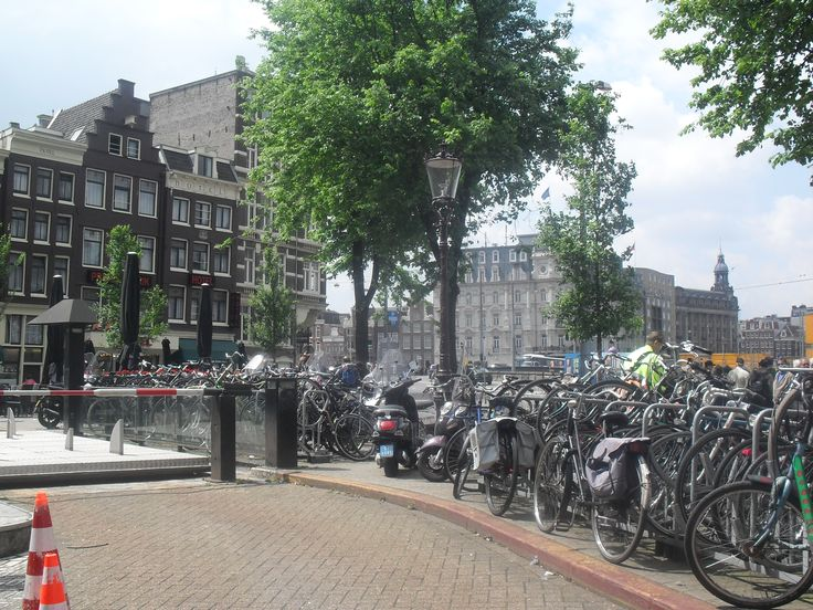 Bikes - they are everywhere in Netherlands