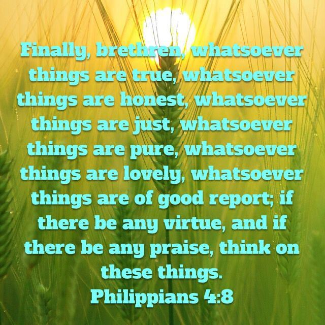 Philippians 4:8; Finally, brethren, whatsoever things are true, whatsoever things are honest, whatsoever things are just, whatsoever things are pure, whatsoever things are lovely, whatsoever things are of good report; if there be any virtue, and if there be any praise, think on these things. THINK ON THESE THINGS 🦋