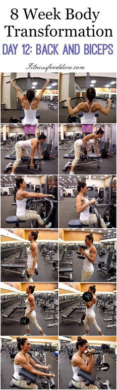 8 week Body Transformation: Day 12 Back and Biceps.
