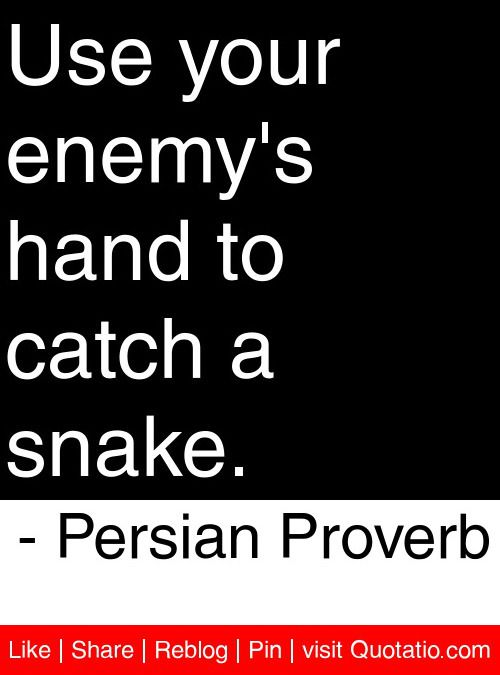 Use your enemy's hand to catch a snake. - Persian Proverb #quotes #quotations