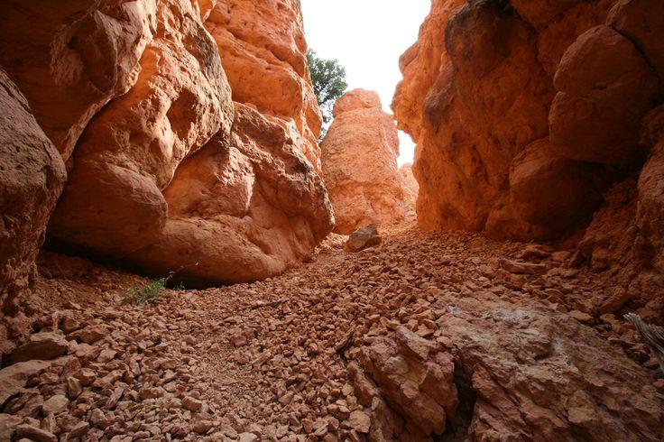 Bryce Canyon - John Johnson