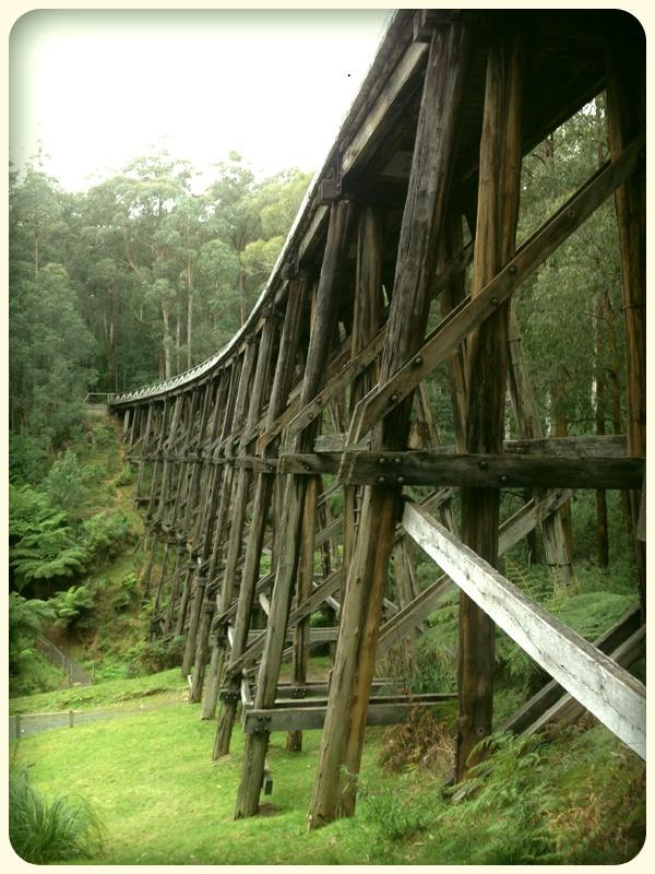 Noojee Trestle Bridge Gippsland