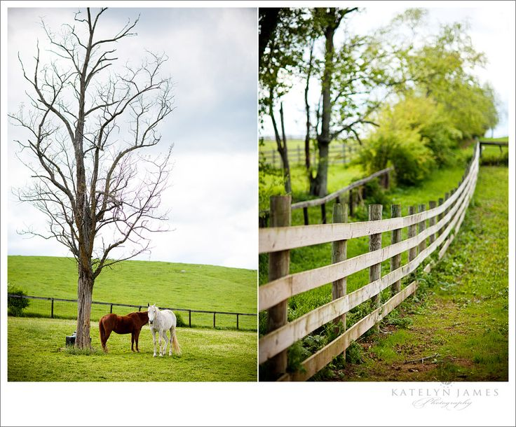 8 best school backgrounds images on pinterest backdrops for Country farm simples