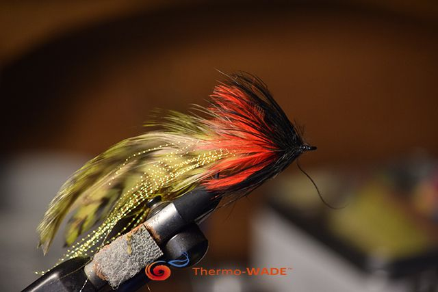 Another Great Streamer,  I use this one for Brown Trout, Bass and Tarpon.  #Troutbum #getwild #Flyfishing